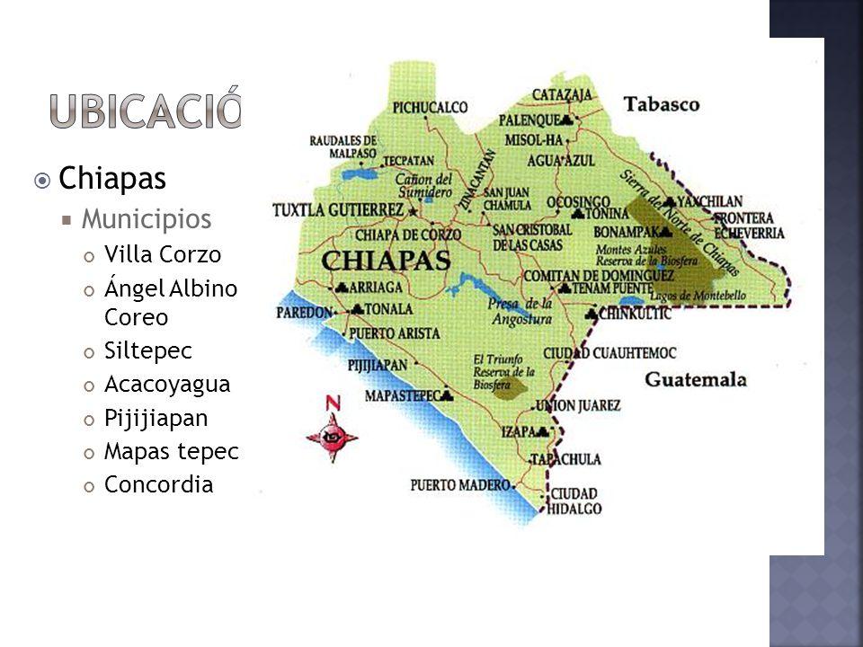 Chiapas Municipios Villa Corzo Ángel Albino Coreo Siltepec Acacoyagua Pijijiapan Mapas tepec Concordia