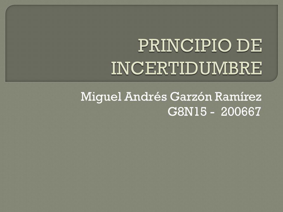 Miguel Andrés Garzón Ramírez G8N15 - 200667