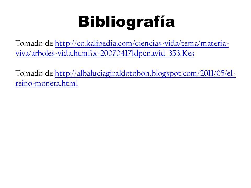 Tomado de http://co.kalipedia.com/ciencias-vida/tema/materia- viva/arboles-vida.html?x=20070417klpcnavid_353.Keshttp://co.kalipedia.com/ciencias-vida/