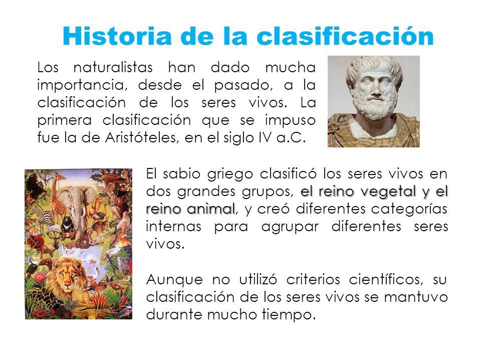 Historia de la clasificación Los naturalistas han dado mucha importancia, desde el pasado, a la clasificación de los seres vivos. La primera clasifica
