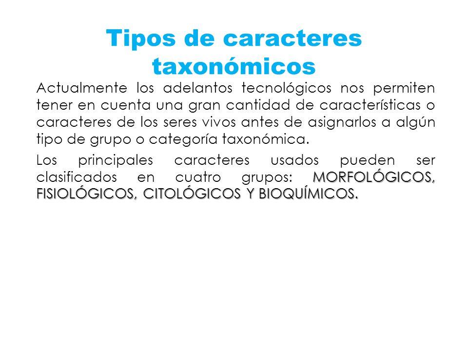 Tipos de caracteres taxonómicos Actualmente los adelantos tecnológicos nos permiten tener en cuenta una gran cantidad de características o caracteres