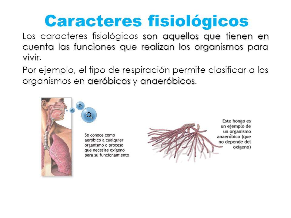 Caracteres fisiológicos son aquellos que tienen en cuenta las funciones que realizan los organismos para vivir Los caracteres fisiológicos son aquello