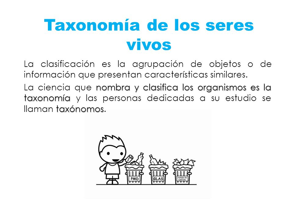Taxonomía de los seres vivos La clasificación es la agrupación de objetos o de información que presentan características similares. nombra y clasifica
