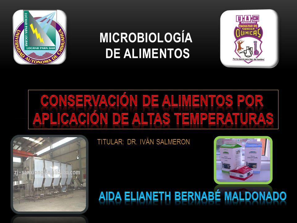 TITULAR: DR. IVÁN SALMERON MICROBIOLOGÍA DE ALIMENTOS