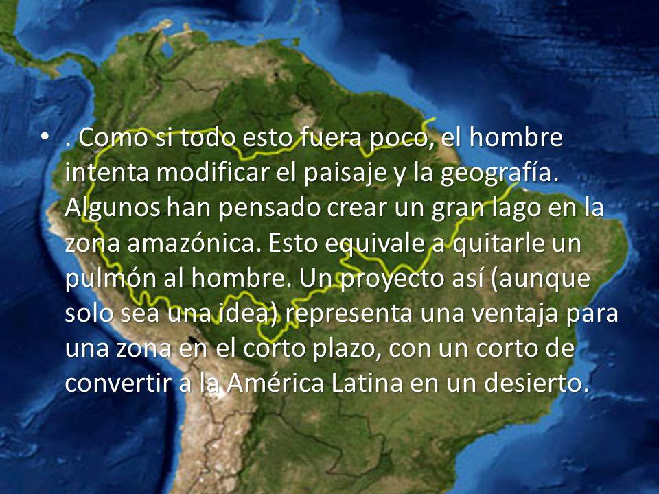 Como si todo esto fuera poco, el hombre intenta modificar el paisaje y la geografía. Algunos han pensado crear un gran lago en la zona amazónica. Esto