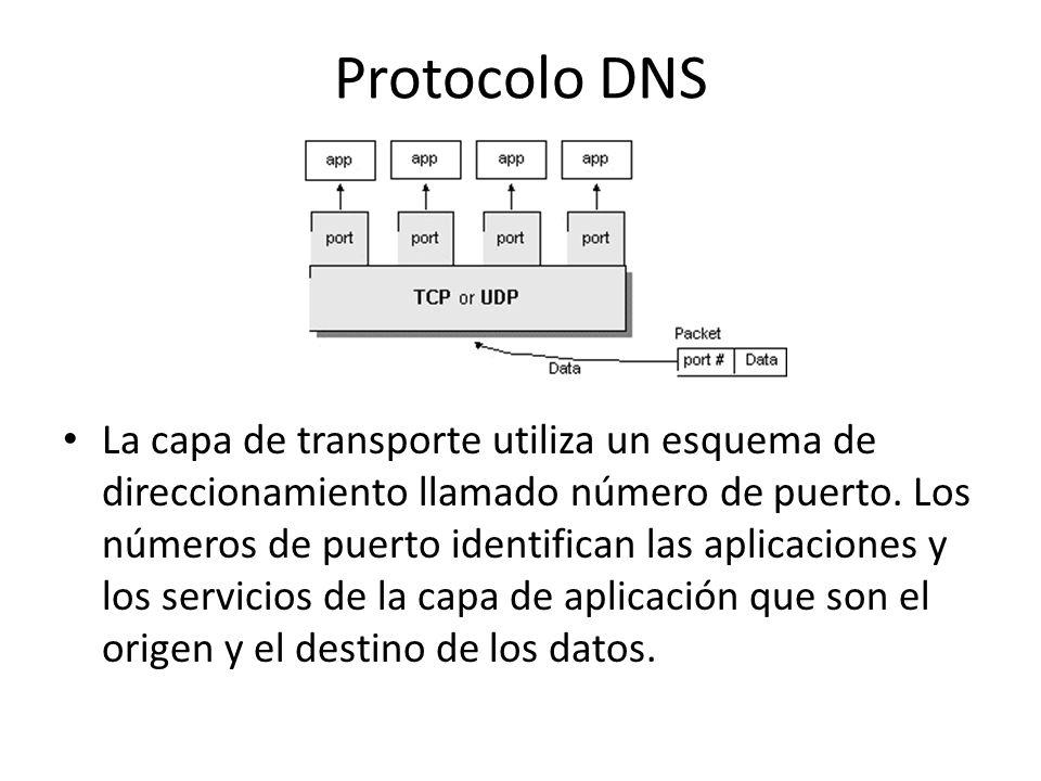 Protocolo DNS La capa de transporte utiliza un esquema de direccionamiento llamado número de puerto. Los números de puerto identifican las aplicacione