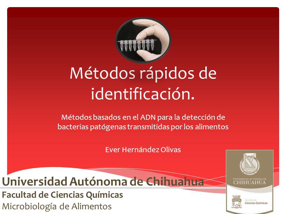 Métodos rápidos de identificación. Métodos basados en el ADN para la detección de bacterias patógenas transmitidas por los alimentos Ever Hernández Ol
