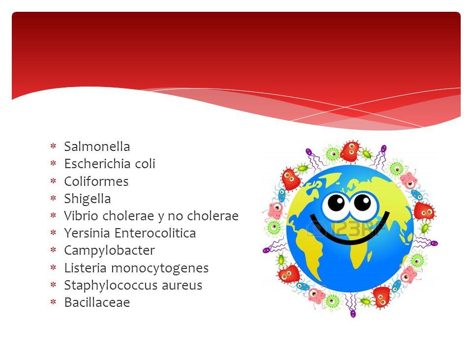 Salmonella Escherichia coli Coliformes Shigella Vibrio cholerae y no cholerae Yersinia Enterocolitica Campylobacter Listeria monocytogenes Staphylococ