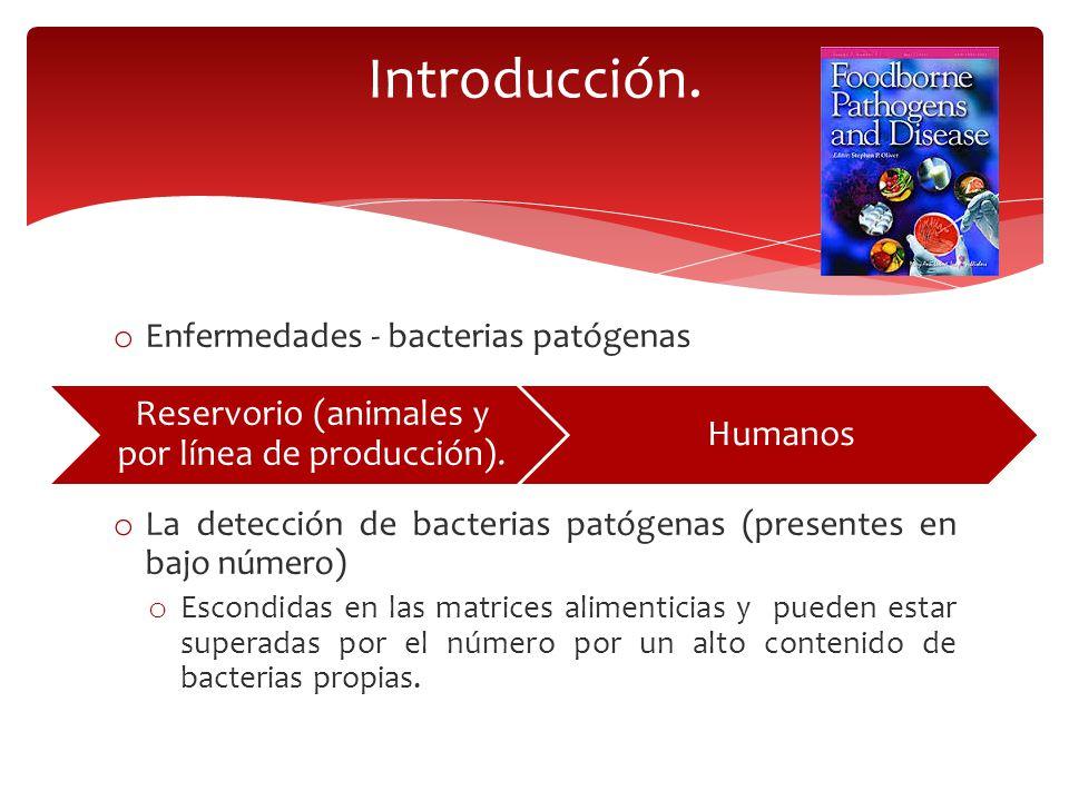 Métodos tradicionales (Etapas de enriquecimiento y pre-enriquecimiento) Son laboriosas y consumen mucho tiempo Acelerar la detección de bacterias patógenas Incrementar la sensibilidad a la detección