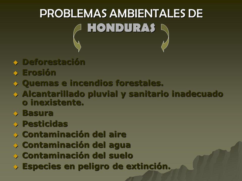 PROBLEMAS AMBIENTALES DE HONDURAS Deforestación Deforestación Erosión Erosión Quemas e incendios forestales.