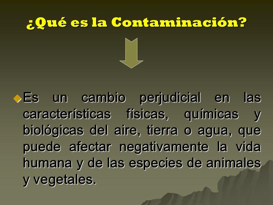 ¿Qué es la Contaminación.