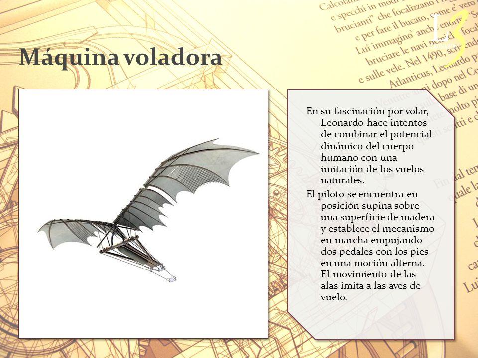 Máquina voladora En su fascinación por volar, Leonardo hace intentos de combinar el potencial dinámico del cuerpo humano con una imitación de los vuelos naturales.
