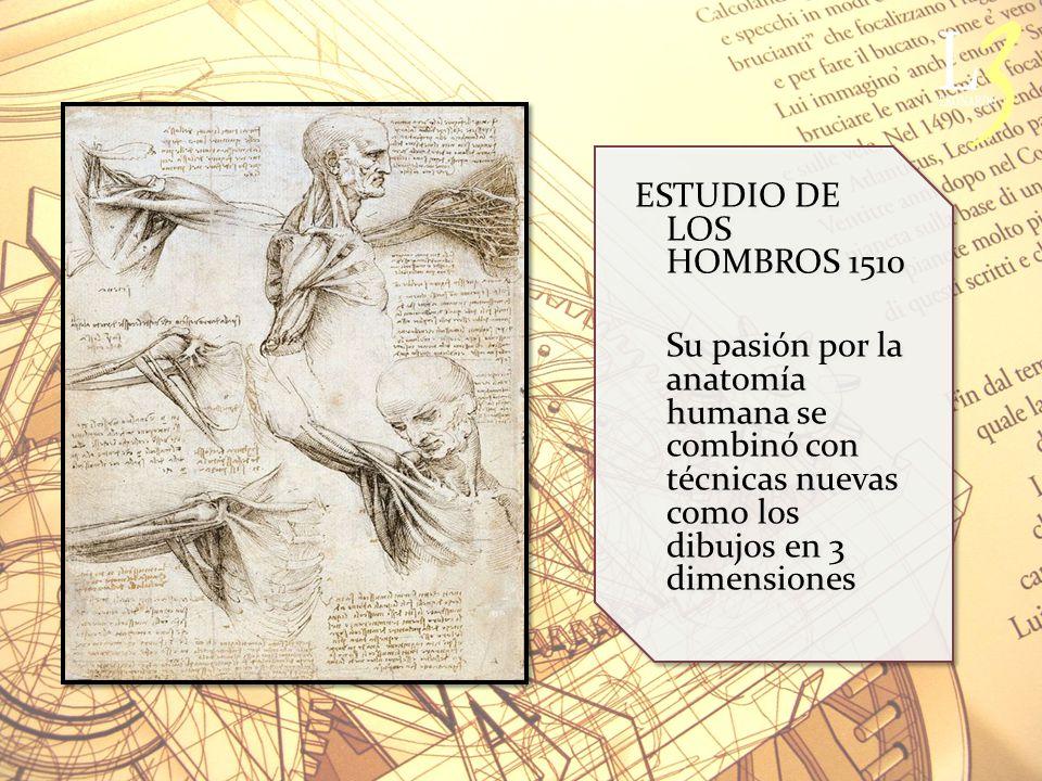 ESTUDIO DE LOS HOMBROS 1510 Su pasión por la anatomía humana se combinó con técnicas nuevas como los dibujos en 3 dimensiones ESTUDIO DE LOS HOMBROS 1510 Su pasión por la anatomía humana se combinó con técnicas nuevas como los dibujos en 3 dimensiones