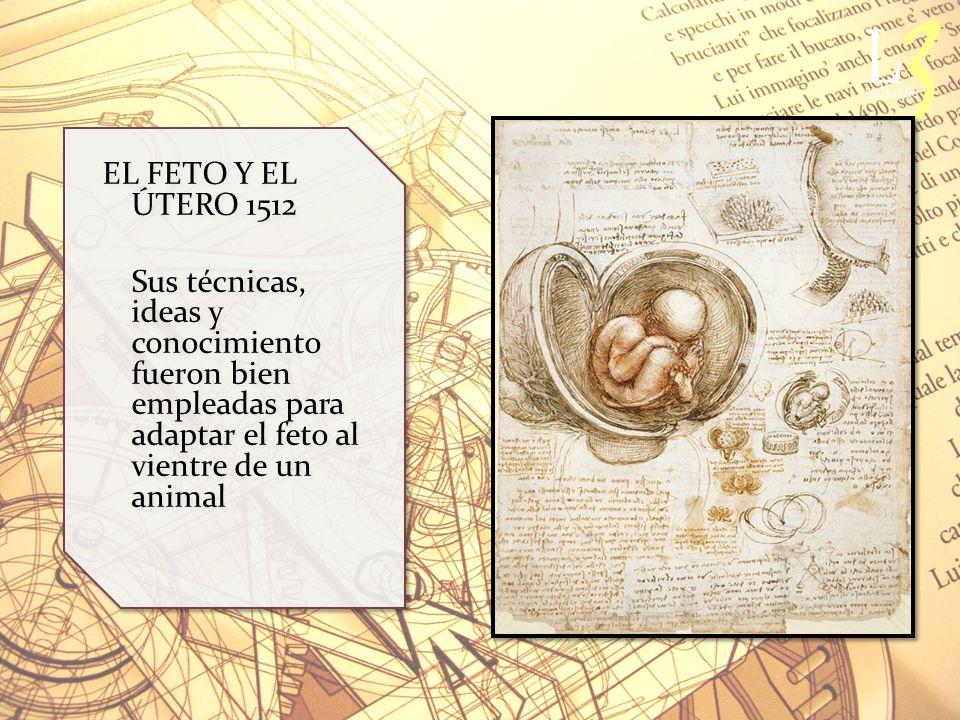 EL FETO Y EL ÚTERO 1512 Sus técnicas, ideas y conocimiento fueron bien empleadas para adaptar el feto al vientre de un animal EL FETO Y EL ÚTERO 1512 Sus técnicas, ideas y conocimiento fueron bien empleadas para adaptar el feto al vientre de un animal