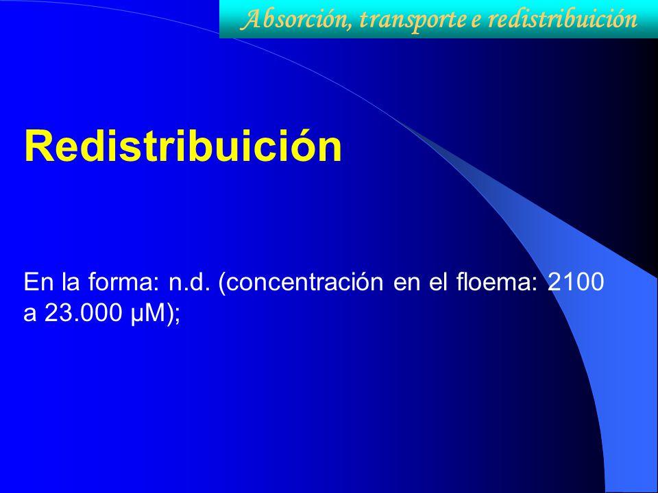 Redistribuición En la forma: n.d. (concentración en el floema: 2100 a 23.000 µM); Absorción, transporte e redistribuición