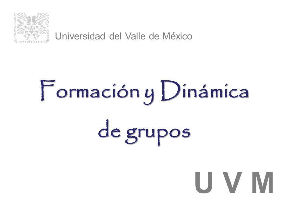 Universidad del Valle de México U V M Formación y Dinámica de grupos