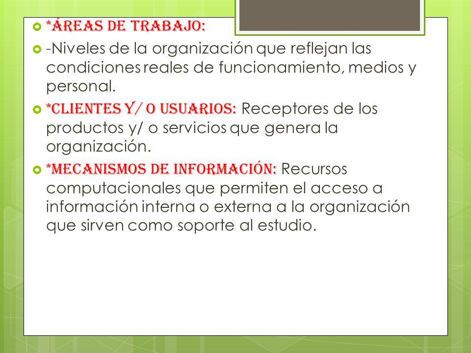 *Áreas de trabajo: -Niveles de la organización que reflejan las condiciones reales de funcionamiento, medios y personal.