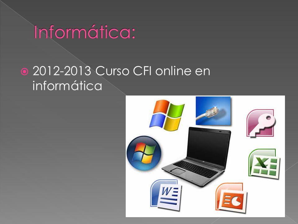 2012-2013 Curso CFI online en informática