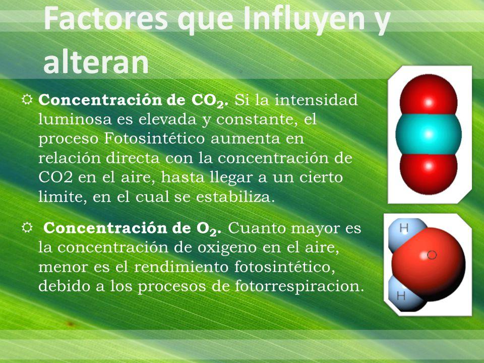 Concentración de CO 2.