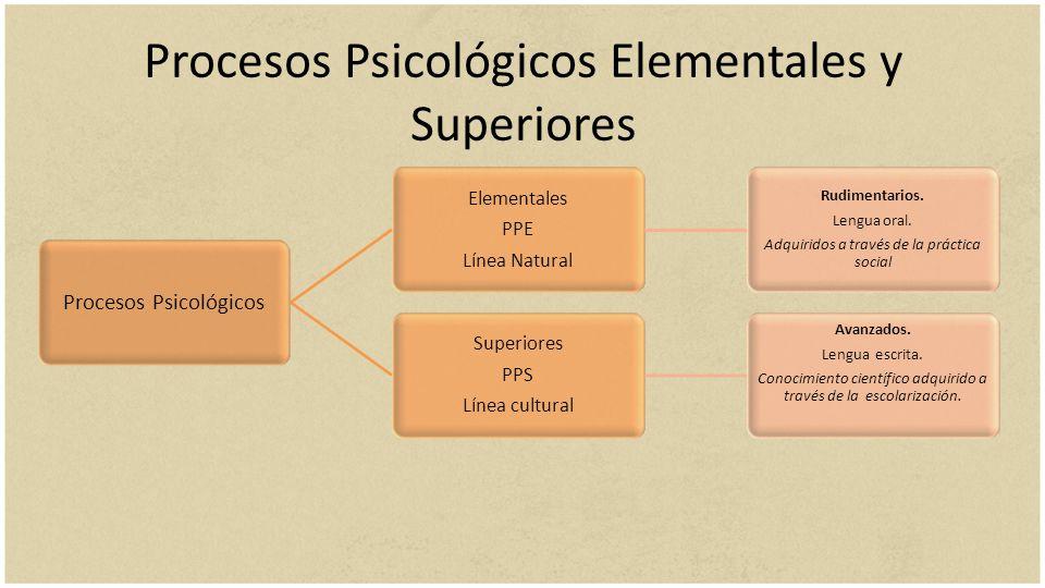 Procesos Psicológicos Elementales y Superiores Procesos Psicológicos Elementales PPE Línea Natural Rudimentarios. Lengua oral. Adquiridos a través de