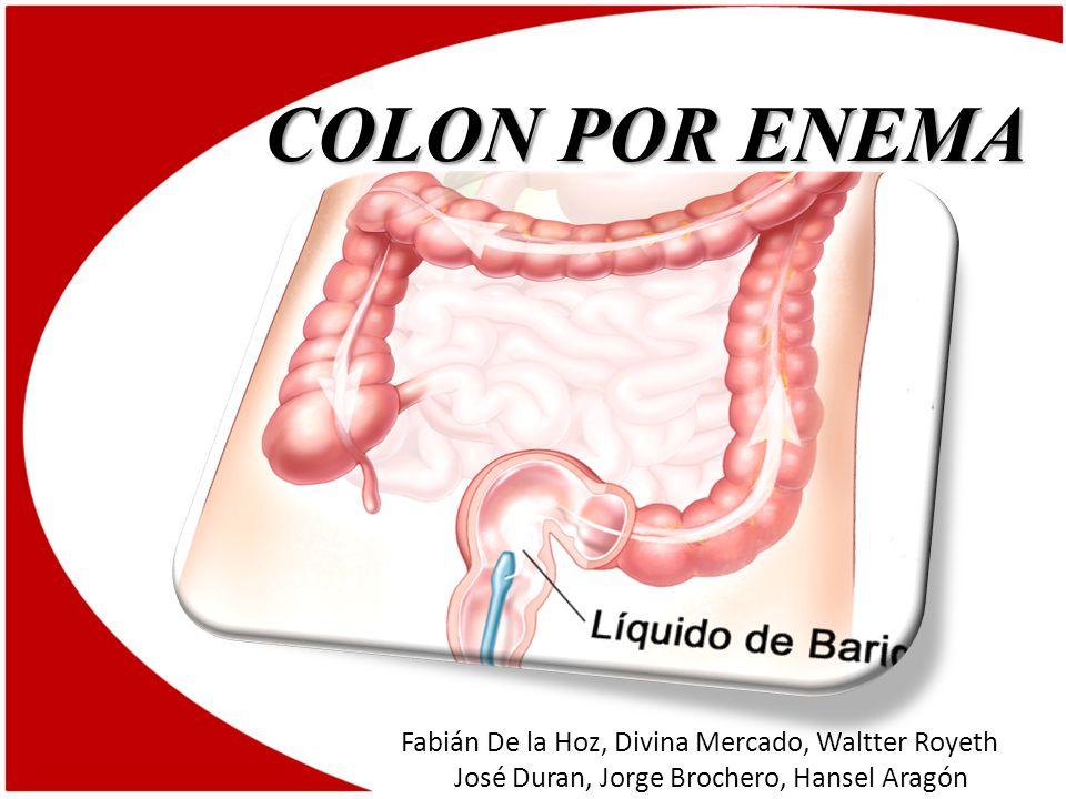 ANATOMIA DEL COLON CIEGO COLON ACENDENTE ANGULO EPATICO COLON TRANSVERSO ANGULO ESPLENICO COLON DECENDENTE COLON SIGMOIDEO RETO ANO