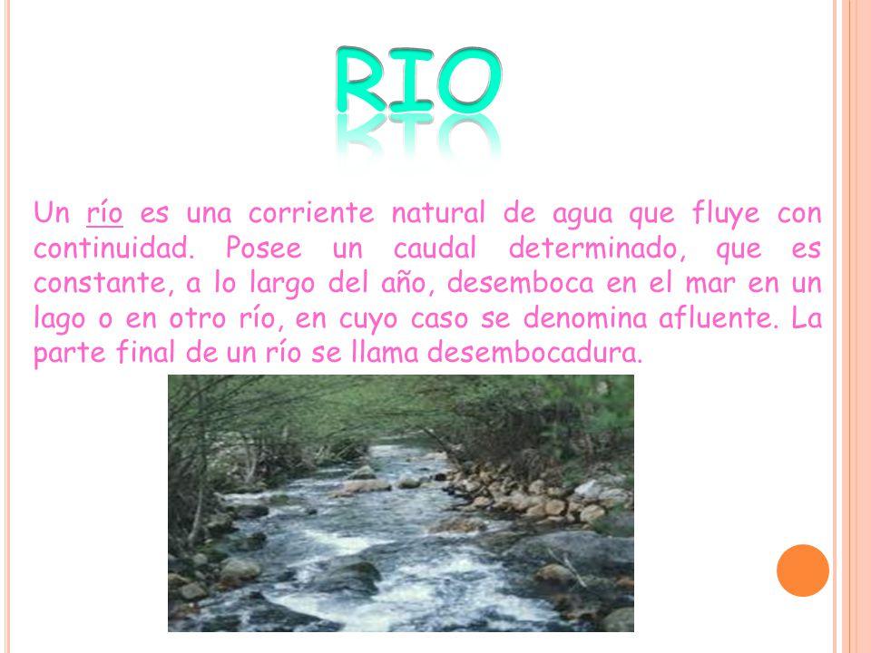 Un río es una corriente natural de agua que fluye con continuidad.