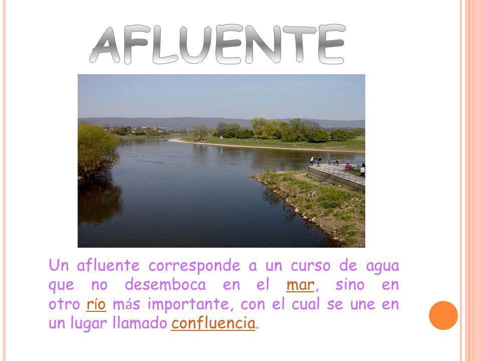 Un afluente corresponde a un curso de agua que no desemboca en el mar, sino en otro r í o m á s importante, con el cual se une en un lugar llamado confluencia.