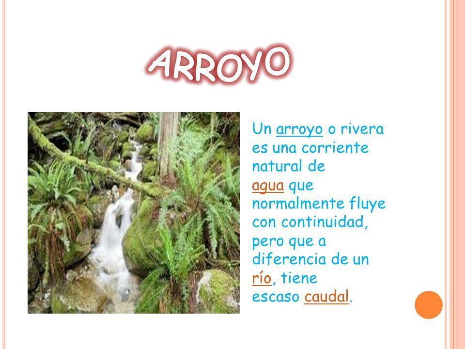 Un arroyo o rivera es una corriente natural de agua que normalmente fluye con continuidad, pero que a diferencia de un río, tiene escaso caudal.
