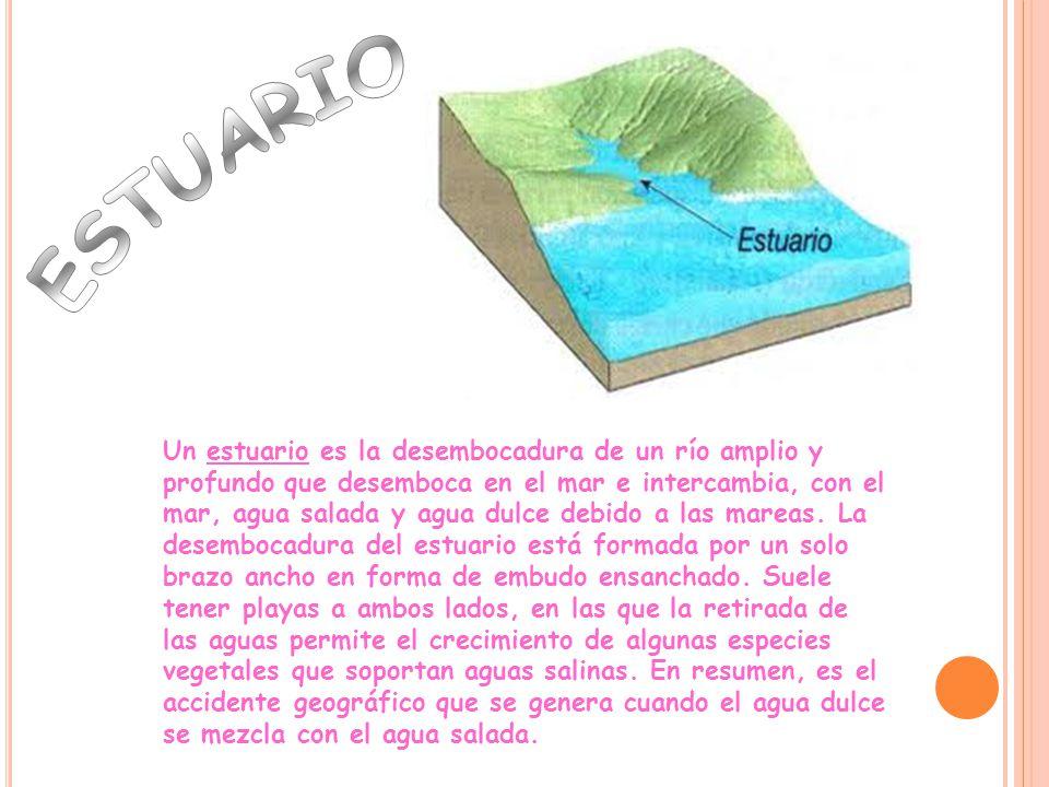Un estuario es la desembocadura de un río amplio y profundo que desemboca en el mar e intercambia, con el mar, agua salada y agua dulce debido a las mareas.