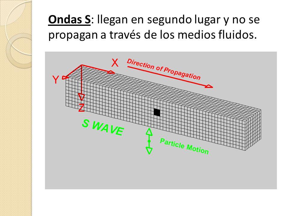 Ondas L: cuando las ondas P y S alcanzan el epicentro generan ondas L o lentas.