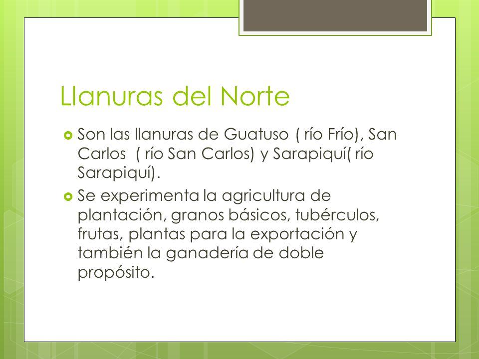 Llanuras del Norte Son las llanuras de Guatuso ( río Frío), San Carlos ( río San Carlos) y Sarapiquí( río Sarapiquí). Se experimenta la agricultura de