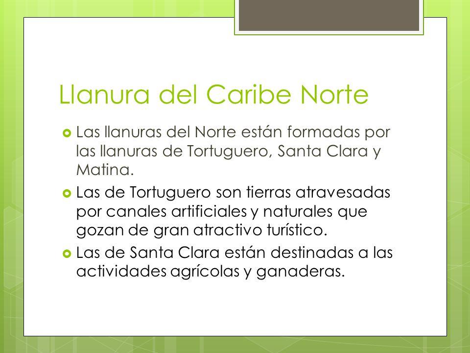 Llanura del Caribe Norte Las llanuras del Norte están formadas por las llanuras de Tortuguero, Santa Clara y Matina. Las de Tortuguero son tierras atr