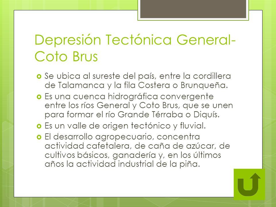 Depresión Tectónica General- Coto Brus Se ubica al sureste del país, entre la cordillera de Talamanca y la fila Costera o Brunqueña. Es una cuenca hid