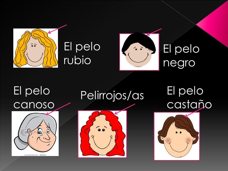 El pelo rubio El pelo negro El pelo canoso Pelirrojos/as El pelo castaño