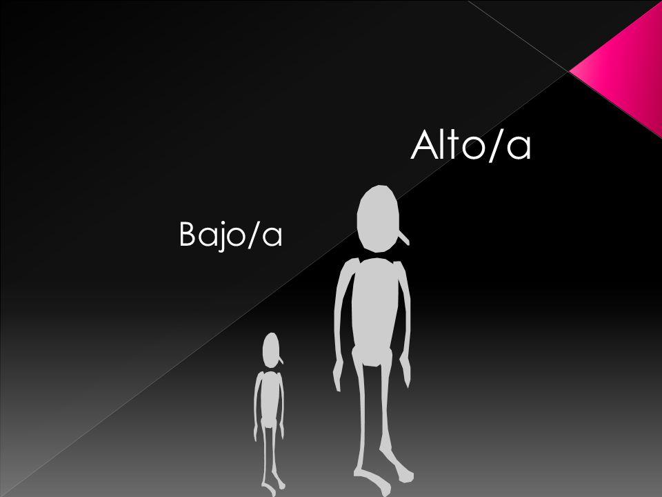 Bajo/a Alto/a