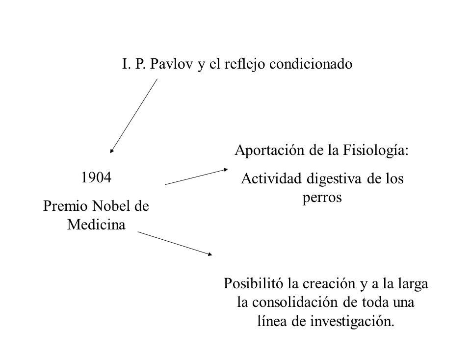 I. P. Pavlov y el reflejo condicionado Aportación de la Fisiología: Actividad digestiva de los perros 1904 Premio Nobel de Medicina Posibilitó la crea