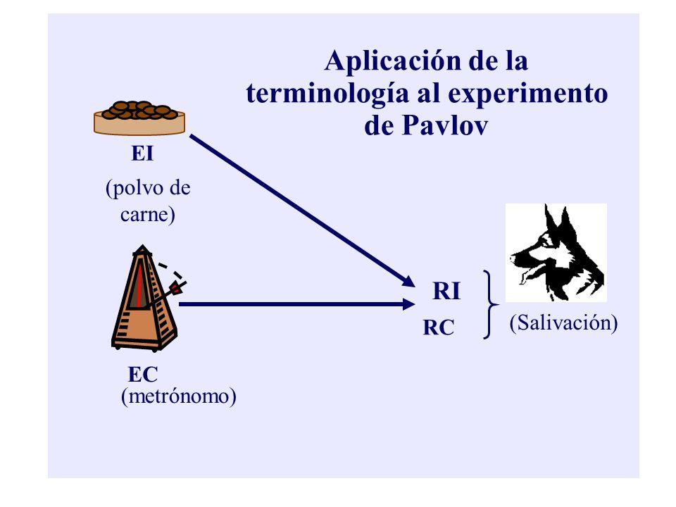 EI EC (polvo de carne) (metrónomo) RI RC (Salivación) Aplicación de la terminología al experimento de Pavlov