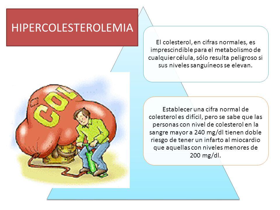 El colesterol, en cifras normales, es imprescindible para el metabolismo de cualquier célula, sólo resulta peligroso si sus niveles sanguíneos se elev