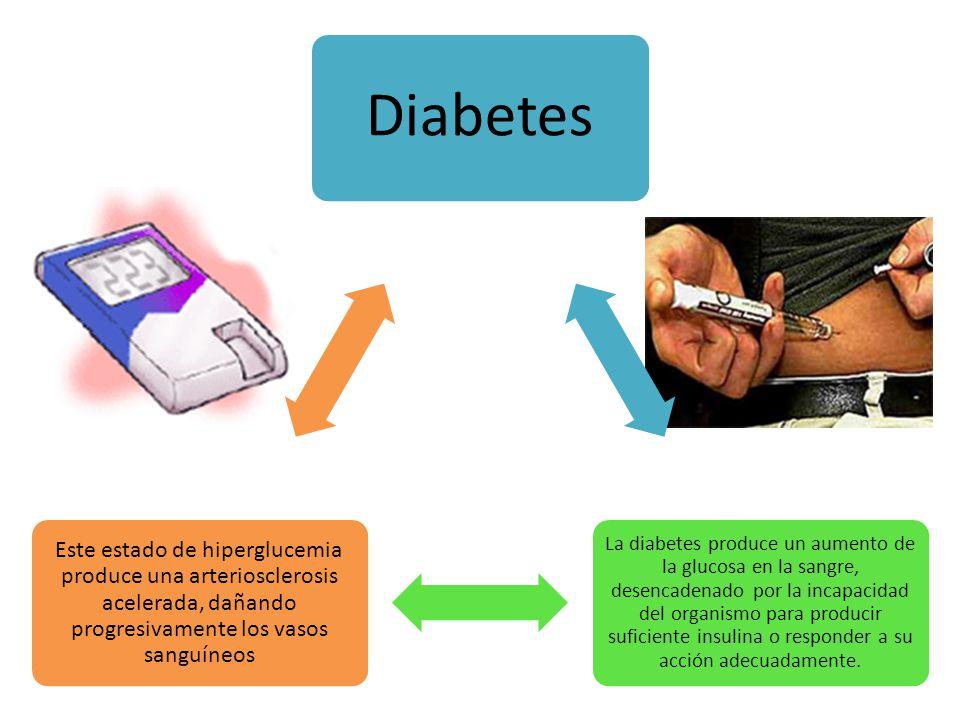 Diabetes La diabetes produce un aumento de la glucosa en la sangre, desencadenado por la incapacidad del organismo para producir suficiente insulina o