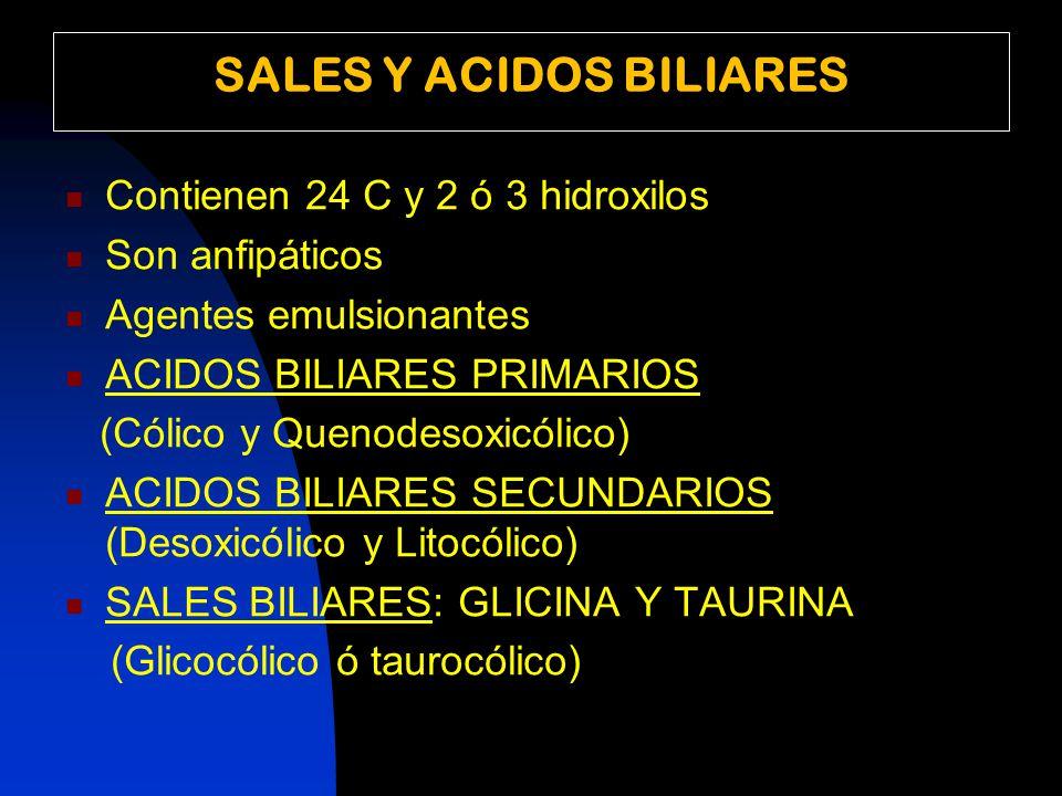 SALES Y ACIDOS BILIARES Contienen 24 C y 2 ó 3 hidroxilos Son anfipáticos Agentes emulsionantes ACIDOS BILIARES PRIMARIOS (Cólico y Quenodesoxicólico) ACIDOS BILIARES SECUNDARIOS (Desoxicólico y Litocólico) SALES BILIARES: GLICINA Y TAURINA (Glicocólico ó taurocólico)