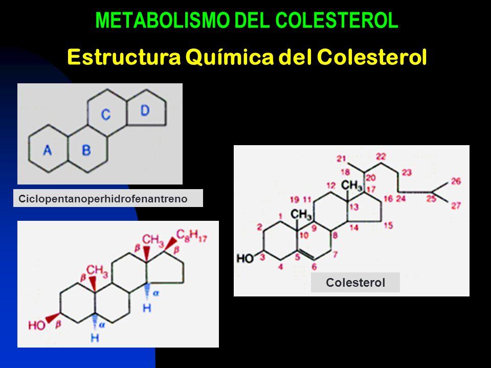 METABOLISMO DEL COLESTEROL Estructura Química del Colesterol Ciclopentanoperhidrofenantreno Colesterol