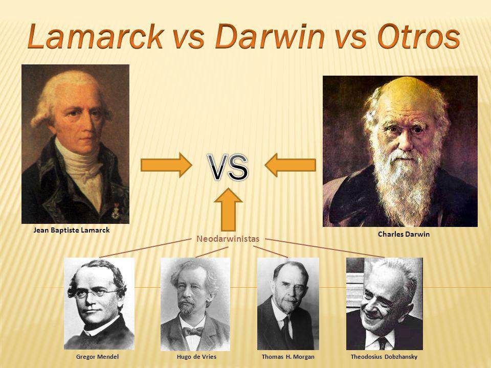 Jean Baptiste Lamarck Charles Darwin Gregor MendelHugo de VriesThomas H. MorganTheodosius Dobzhansky Neodarwinistas