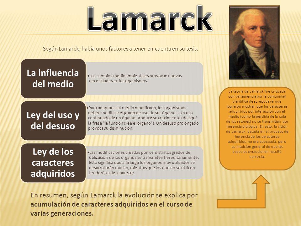 Según Lamarck, había unos factores a tener en cuenta en su tesis: Los cambios medioambientales provocan nuevas necesidades en los organismos. La influ