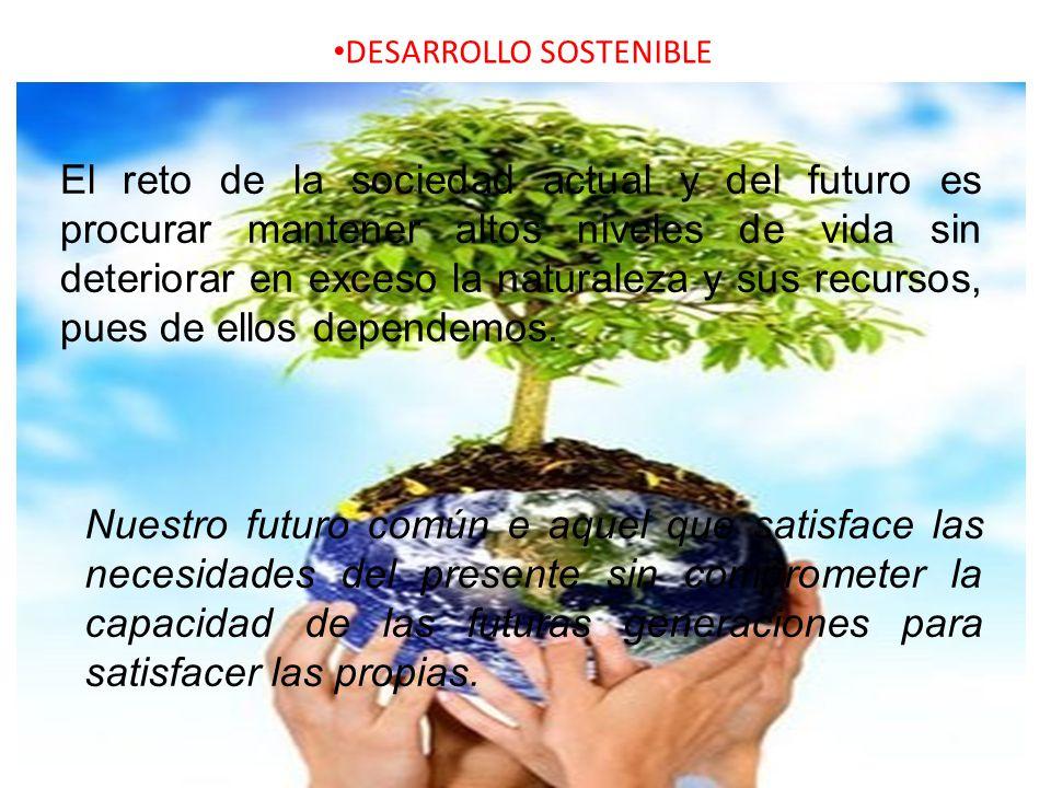 DESARROLLO SOSTENIBLE El reto de la sociedad actual y del futuro es procurar mantener altos niveles de vida sin deteriorar en exceso la naturaleza y s