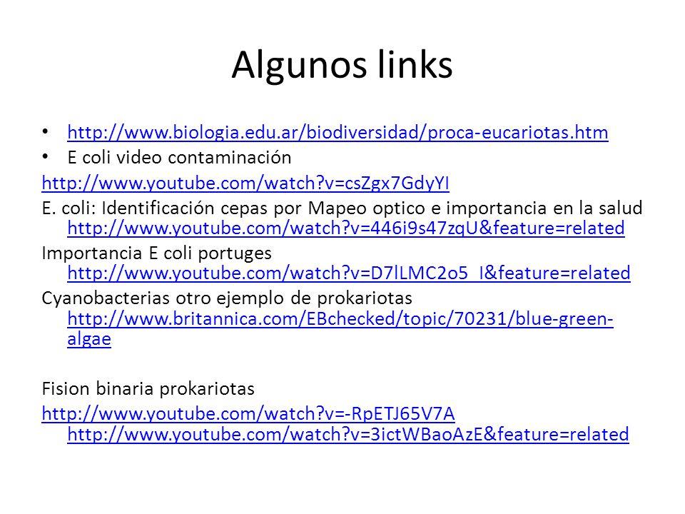 Algunos links http://www.biologia.edu.ar/biodiversidad/proca-eucariotas.htm E coli video contaminación http://www.youtube.com/watch?v=csZgx7GdyYI E. c