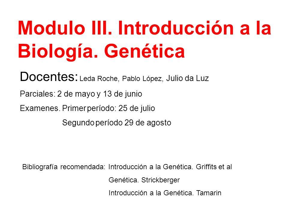 Modulo III. Introducción a la Biología. Genética Docentes: Leda Roche, Pablo López, Julio da Luz Parciales: 2 de mayo y 13 de junio Examenes. Primer p