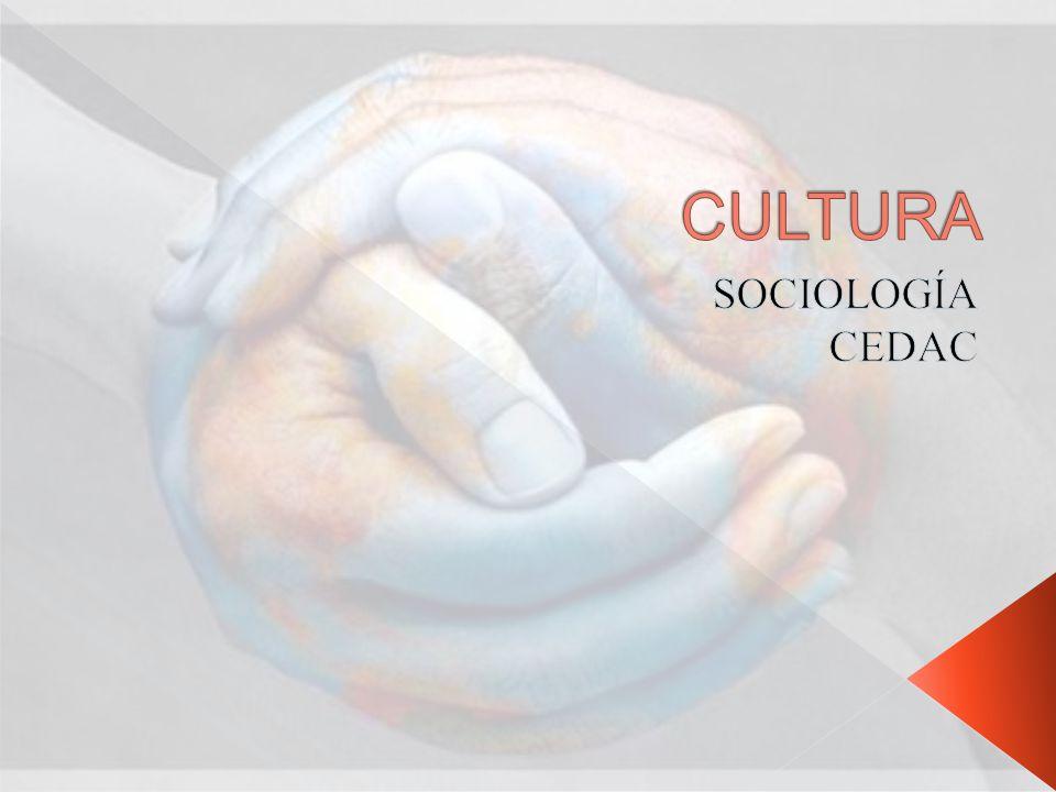 Diseño de formas de vida Valores, creencias, conducta, costumbres y objetos materiales.