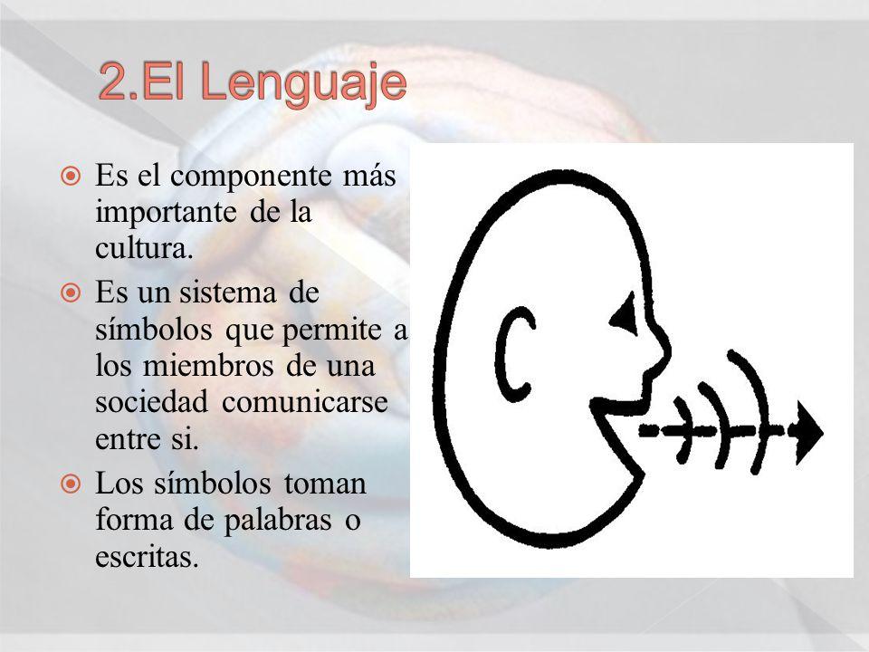 Es el componente más importante de la cultura. Es un sistema de símbolos que permite a los miembros de una sociedad comunicarse entre si. Los símbolos
