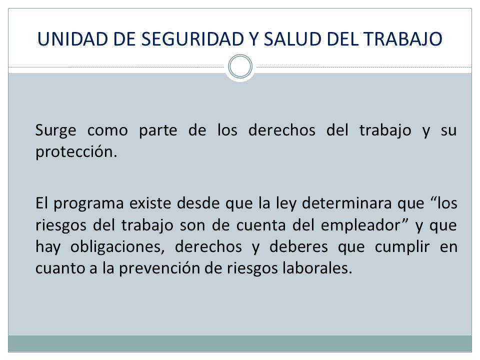 UNIDAD DE SEGURIDAD Y SALUD DEL TRABAJO Surge como parte de los derechos del trabajo y su protección. El programa existe desde que la ley determinara