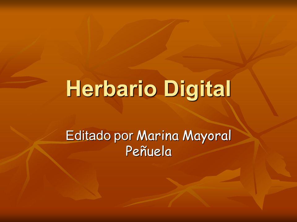 Herbario Digital Editado por Marina Mayoral Peñuela